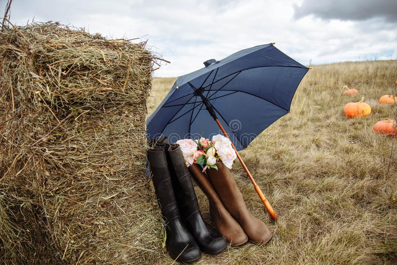 I lantgården Sammansättning av gummistöveler, paraplyet, sugrör och blommor royaltyfri fotografi