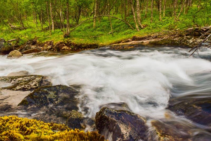 I liquami si muovono sulle acque del fiume lungo le montagne dell'Aurlandsfjellet in Norvegia fotografia stock libera da diritti