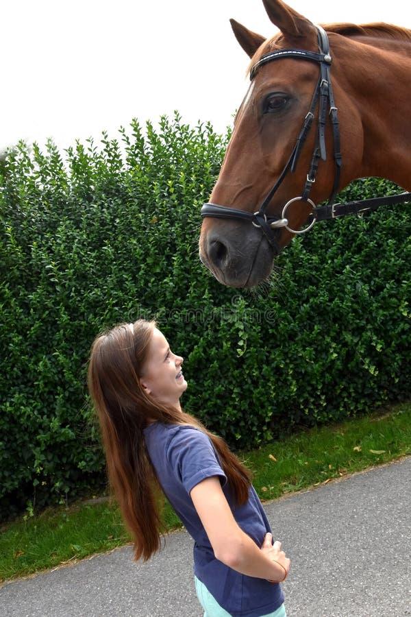 I am a little bit afraid. Little girl meets big horse. She is a little bit afraid royalty free stock photos
