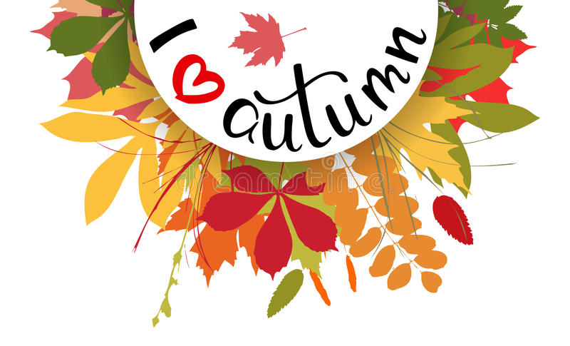 I love autumn background with multicolor leaves. Vector illustr. Ation. Layout for discount labels and shopping royalty free illustration