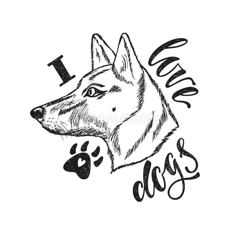 I love dogs. Handwriting phrase with hand drawn monochrome dog in sketch style. Typography design. Vector illustration EPS 10. Isolated on white background stock illustration