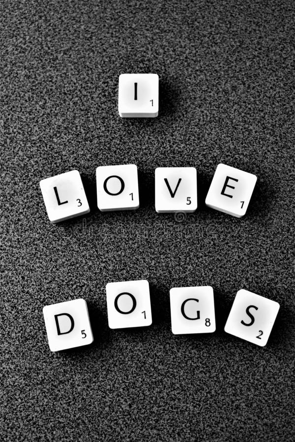 I love dogs stock image