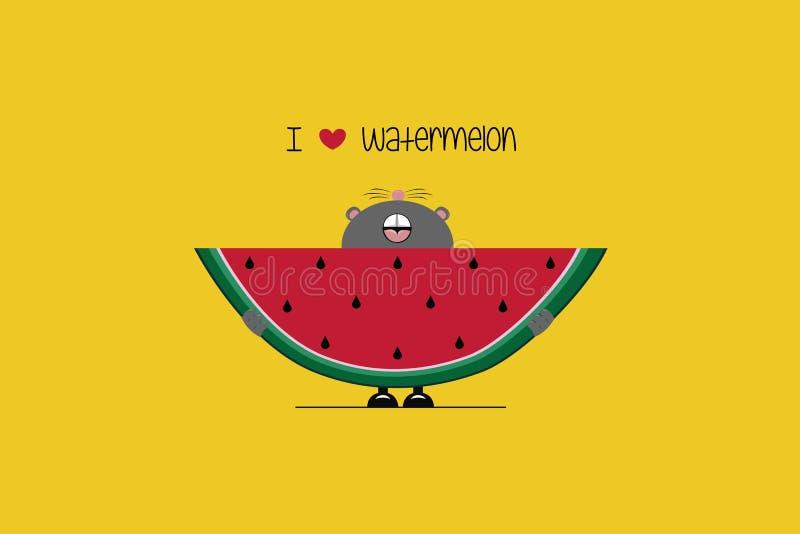 I love Watermelon stock illustration