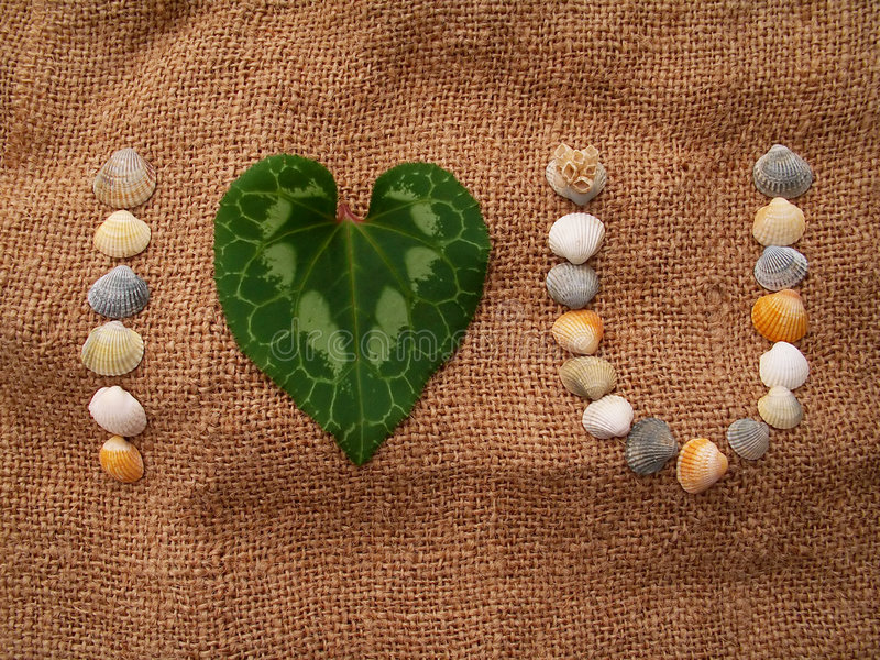 I Love You. I Love U phrase written with sea-shells and Cyclamen leaf on the hessian cloth stock images