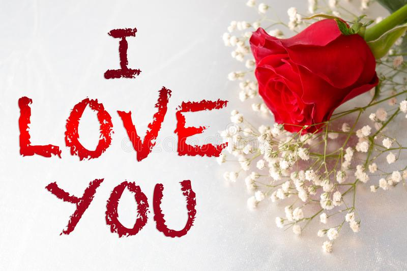 I Love You Gift Card,Red Rose Flower,. I Love You Çift Card,Red Rose Flower on light background royalty free stock image
