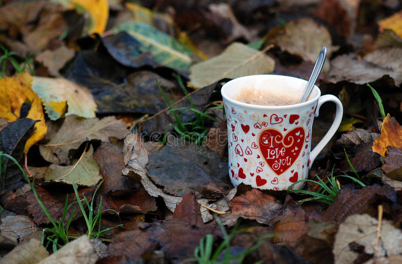 I love you , morning coffee. Picture of a I love you coffee, on one november morning with leaves stock photography