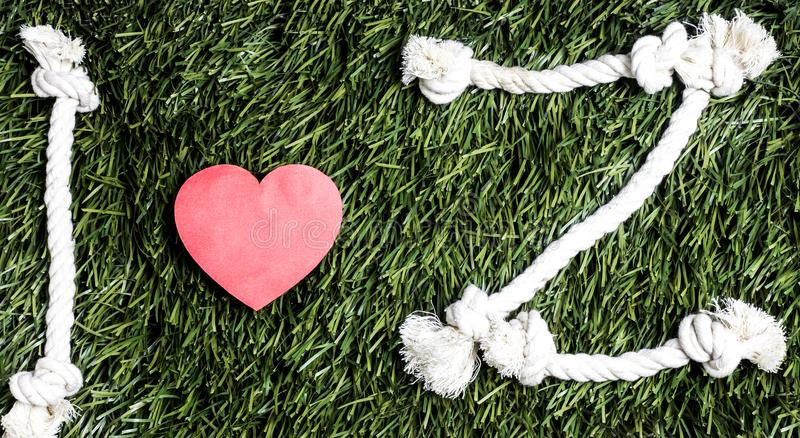 I love Z transcription made from ropes on grass background. I love Z transcription made from ropes on grass background stock photography