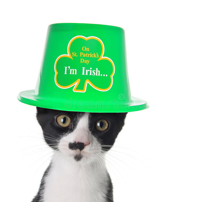 I'm Irish royalty free stock photo