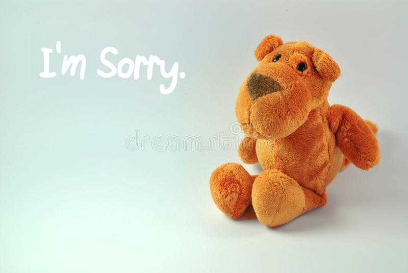 I'm Sorry. Dog stuffed toy with I'm sorry message. Note: Message can be edited royalty free stock images