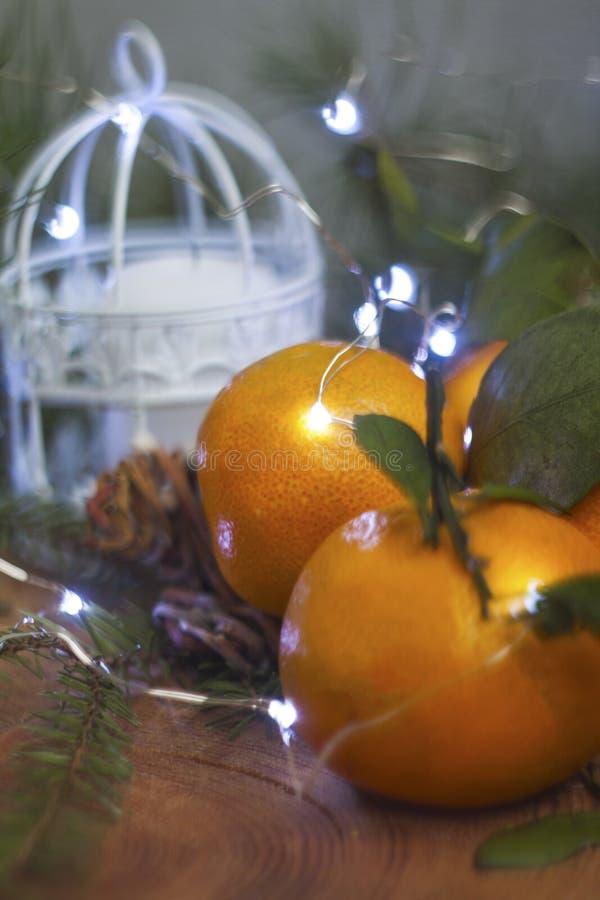 I mandarini e le luci fotografie stock libere da diritti