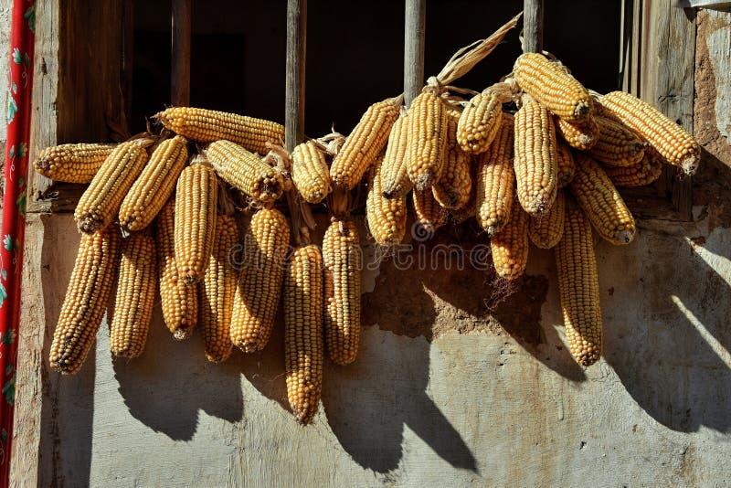 I mazzi vari di cereale appendono fuori della finestra fotografia stock libera da diritti