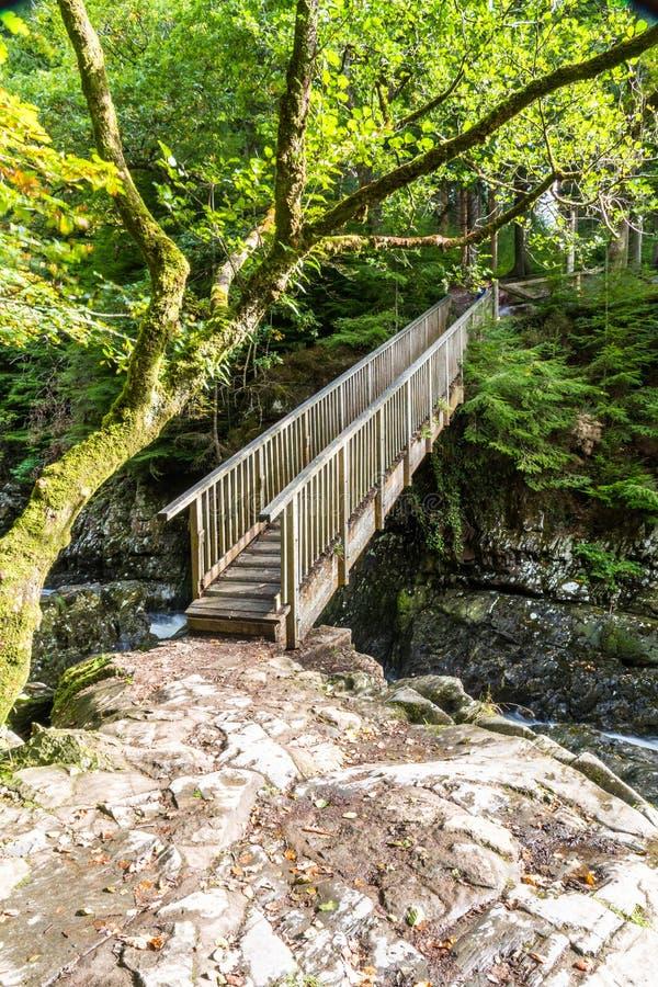 I minatori gettano un ponte su, incrocio di legno nell'educazione mista di Betws Y immagine stock libera da diritti