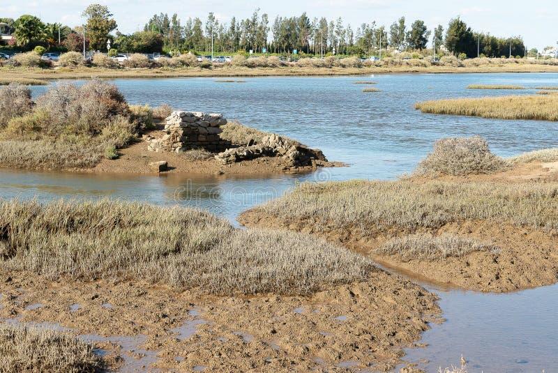 I mitt av lagun av riaen formosa på lågvatten arkivbilder