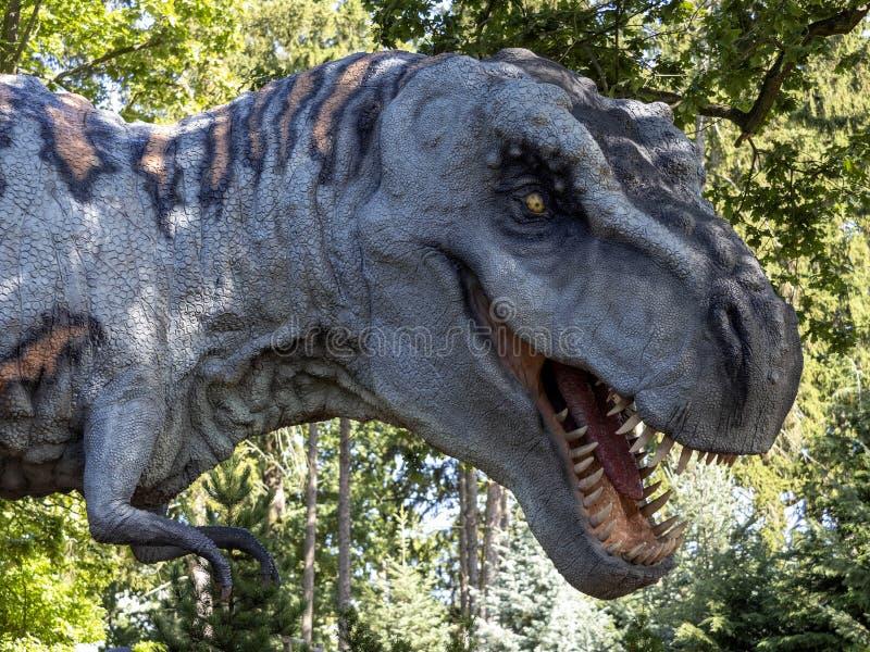I modelli Tyrannosaurus Rex sono popolari nei parchi della Jurassic immagine stock