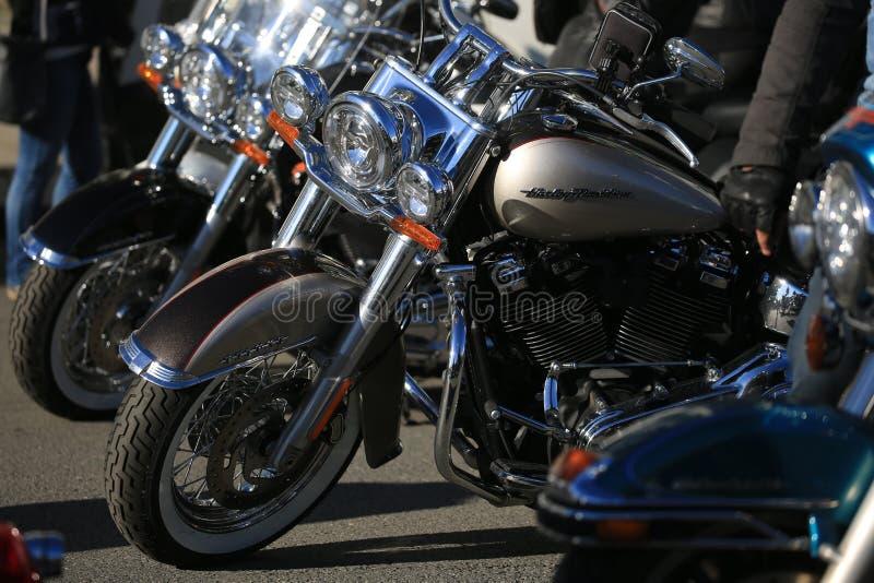 I motocicli Harley-Davidson Softail Deluxe hanno parcheggiato in una fila nel giorno soleggiato immagini stock libere da diritti