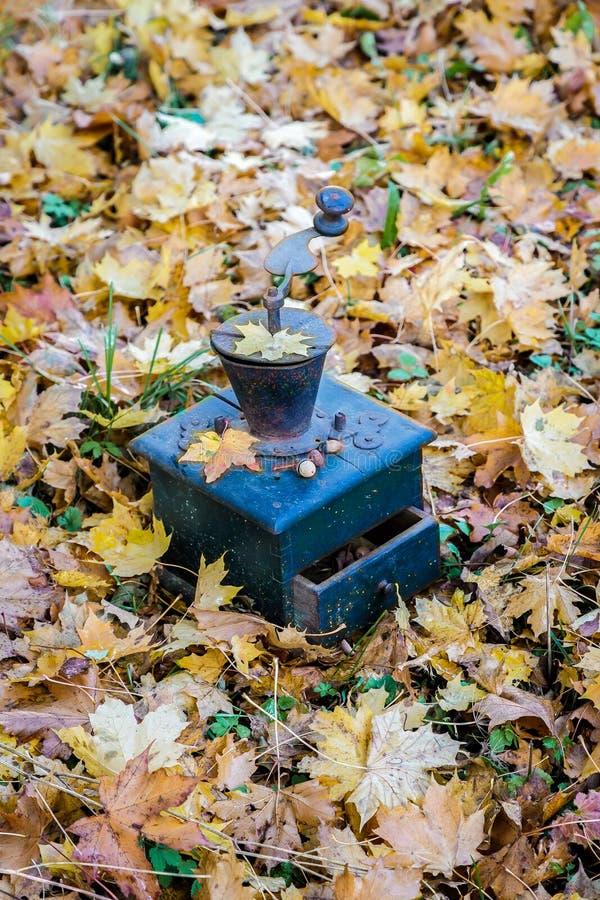I mulini di caffè stanno in foglie di autunno fotografie stock