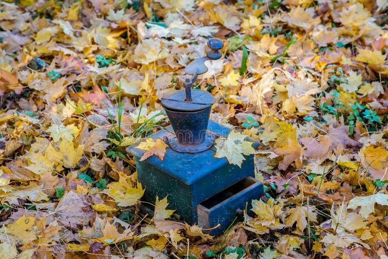 I mulini di caffè stanno in foglie di autunno immagini stock