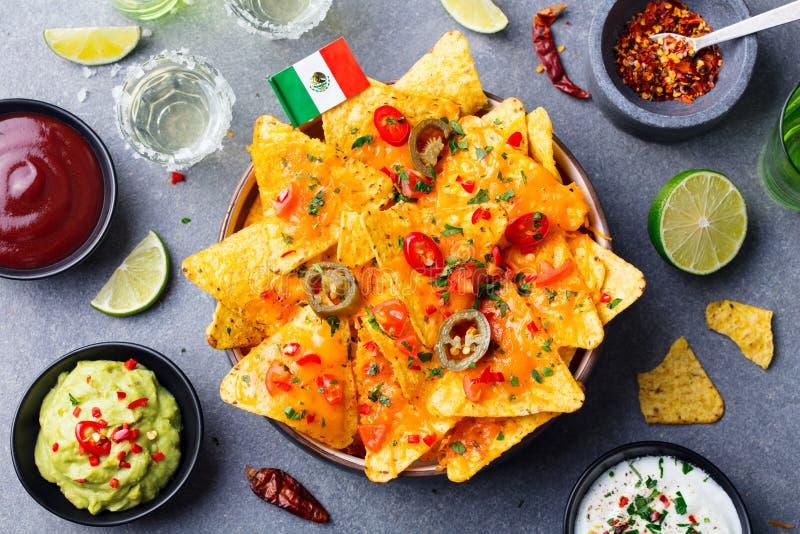 I nacho scheggia con la bandiera messicana ed immerge la varietà fotografia stock libera da diritti