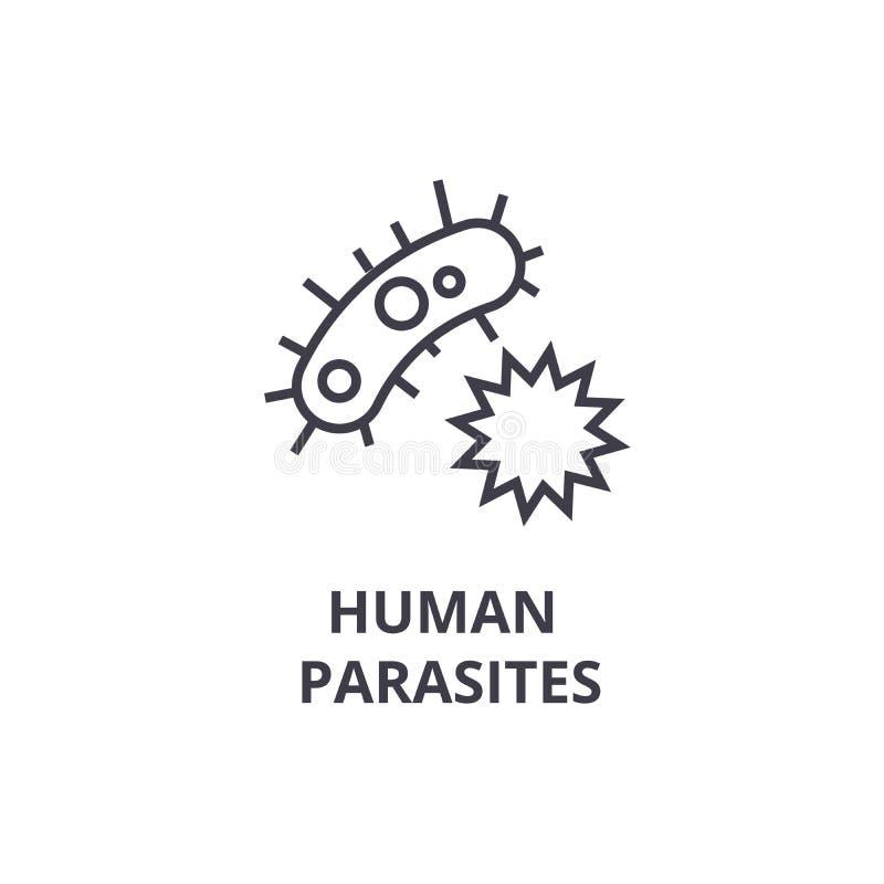 I parassiti umani assottigliano la linea l'icona, il segno, il simbolo, il illustation, il concetto lineare, vettore illustrazione di stock