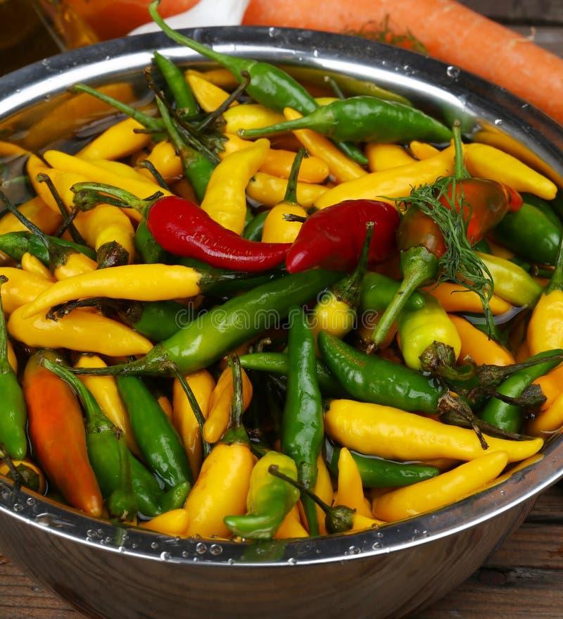 I peperoncini rossi caldi si chiudono su immagine stock