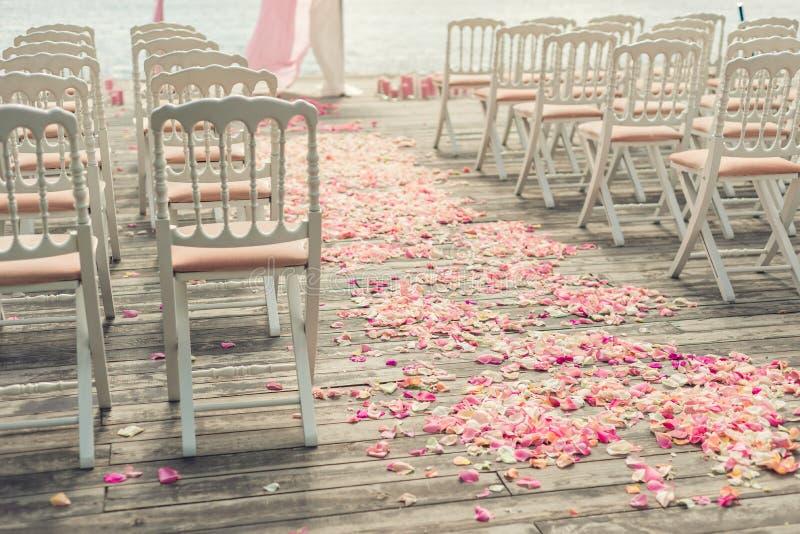 I petali del fiore di Rosa hanno sparso su un pavimento di legno immagini stock