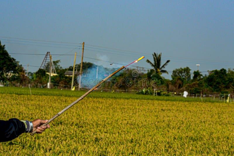 I petardi hanno fatto scappare gli uccelli che stola il riso fotografie stock