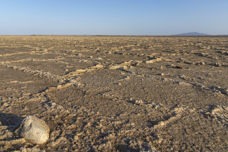 I piani del sale del lago Asale nella depressione di Danakil in Etiopia, Africa fotografia stock
