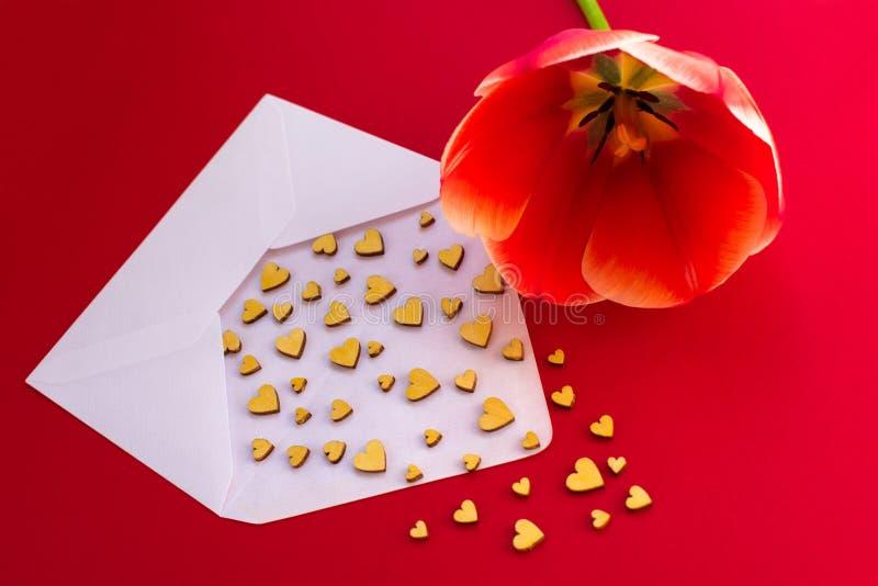 I piccoli cuori di legno volano da una busta bianca su un fondo rosso e su un tulipano rosso Il giorno di Vbanneralentine Concett immagine stock