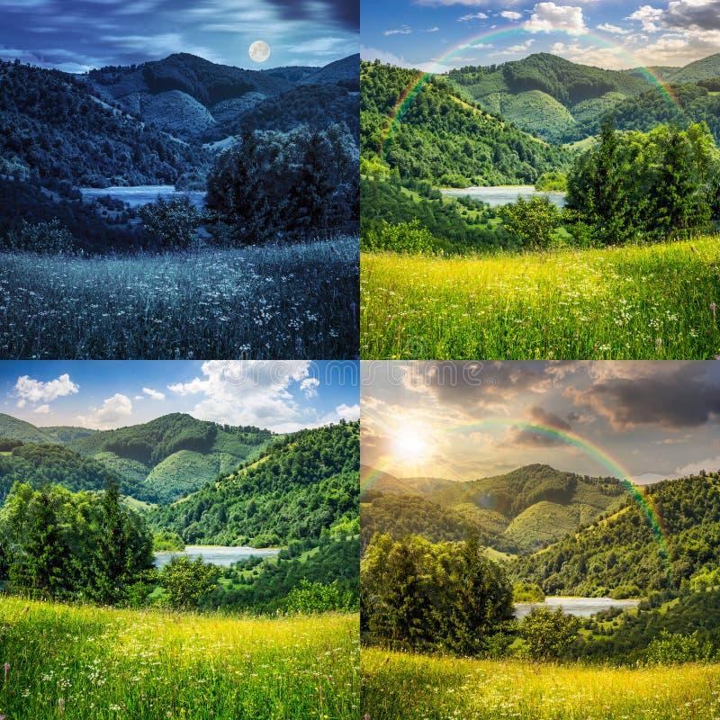 I pini si avvicinano al prato in montagne fotografia stock