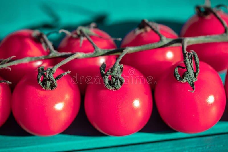 I pomodori ciliegia rossi si chiudono su fotografie stock
