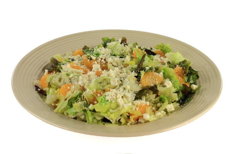 Download I Pomodori Liberano L'insalata Fresca. Immagine Stock - Immagine di pranzo, tagliato: 30825585