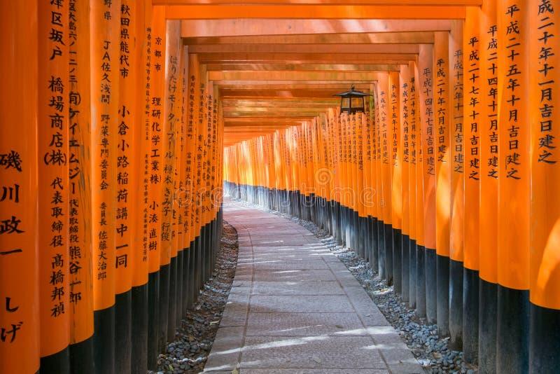I portoni rossi di torii a Fushimi Inari shrine a Kyoto, Giappone fotografia stock libera da diritti