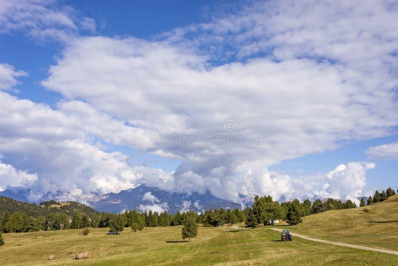 I prati di Viote, su Monte Bondone fotografie stock libere da diritti