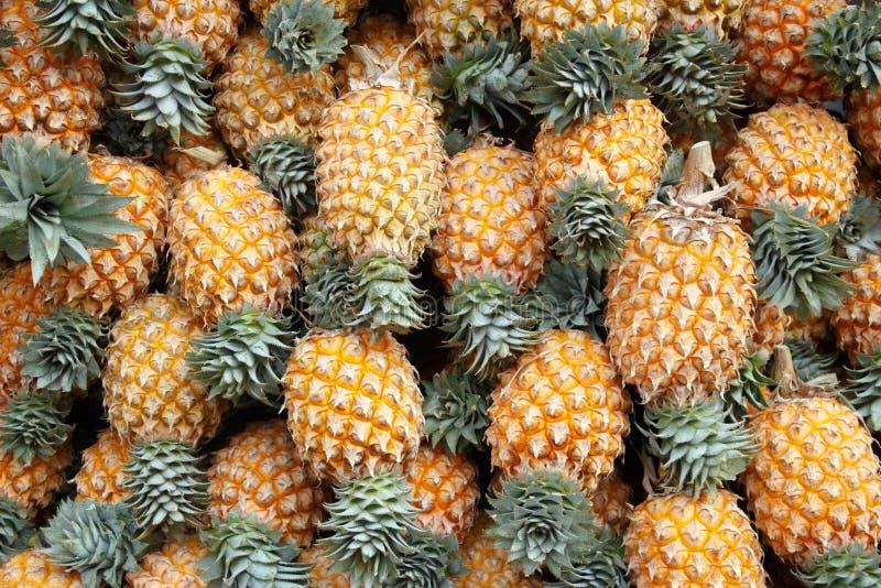 I precedenti degli ananas maturi immagini stock