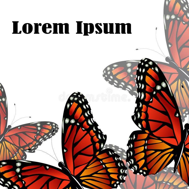 I precedenti di vettore della farfalla di monarca illustrazione vettoriale