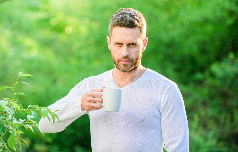 I prefer green tea. Refreshing drink. Man bearded tea farmer hold mug nature background. Green tea contains bioactive. Compounds that improve health. Whole leaf stock images