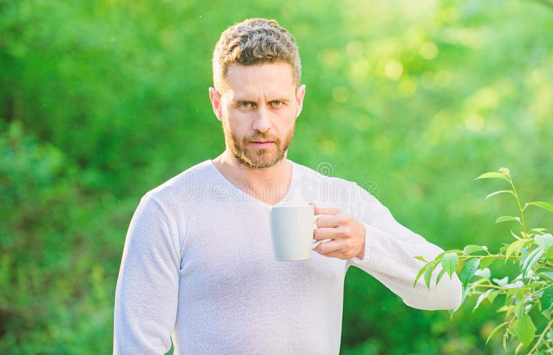 I prefer green tea. Refreshing drink. Man bearded tea farmer hold mug nature background. Green tea contains bioactive. Compounds that improve health. Whole leaf stock image