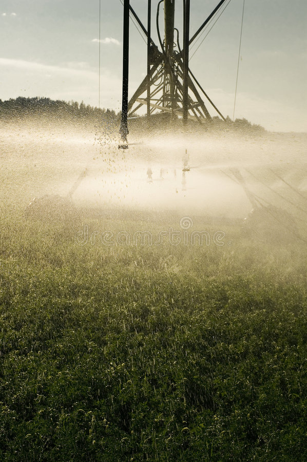 I raccolti d'irrigazione immagini stock