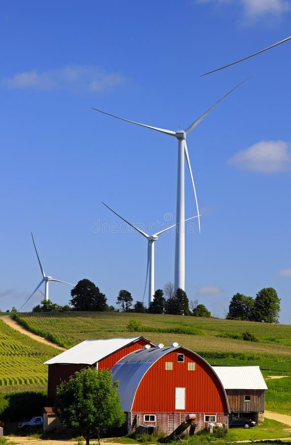 I raccolti del cereale e del vento dell'azienda agricola fotografia stock libera da diritti