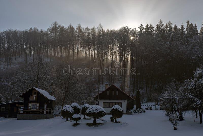Capanna Del Ramo In Foresta Immagine Stock Immagine di