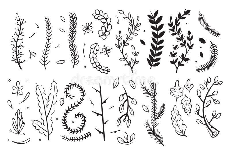 I rami decorativi disegnati a mano con le foglie ed i fiori scarabocchiano l'insieme di elementi floreale di vettore illustrazione vettoriale
