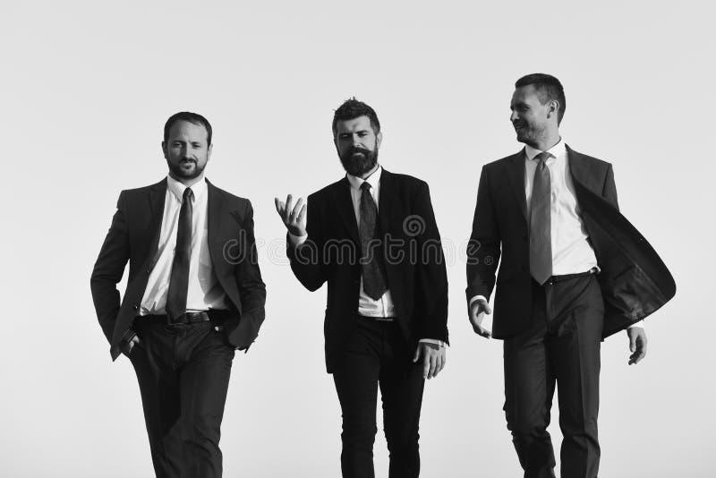 I responsabili vanno avanti e parlano I capi con la barba ed i fronti sorridenti discutono il progetto fotografia stock