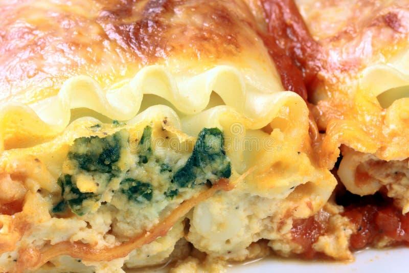 I rulli italiani del lasagna si chiudono in su immagine stock libera da diritti