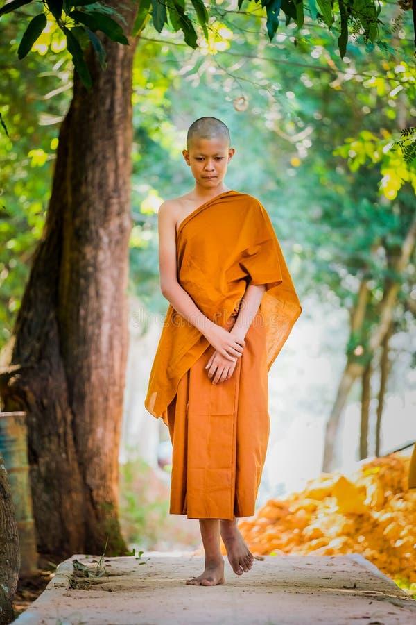 I sacerdoti buddisti praticano camminare la pratica che mette il respiro fotografia stock