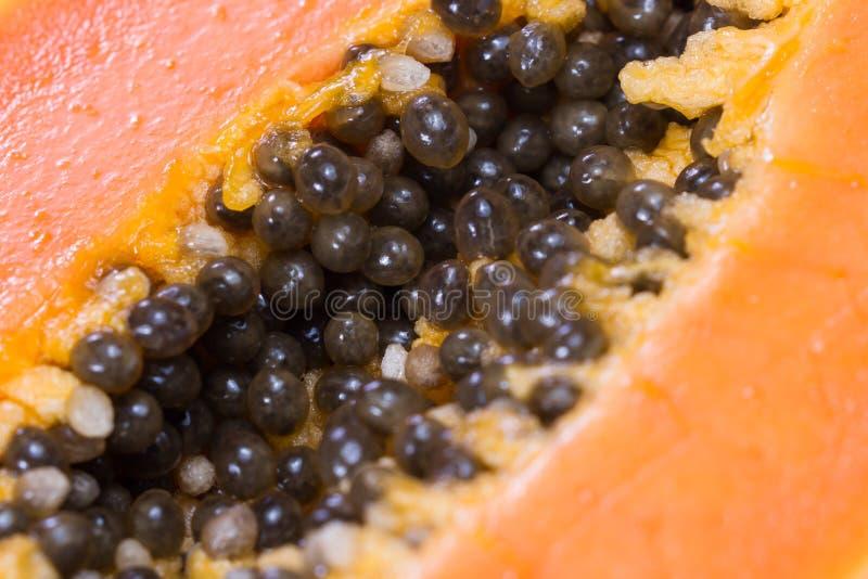 I semi della papaia si chiudono su fotografia stock