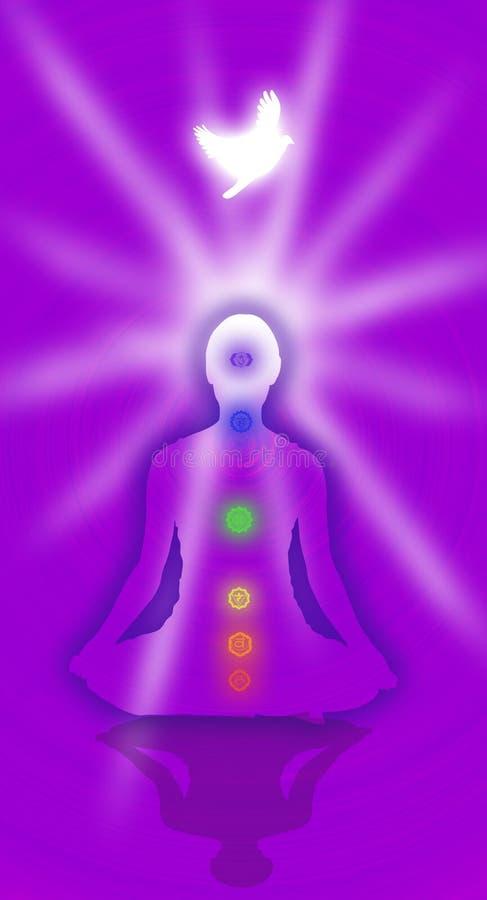 I sette chakras illustrazione vettoriale