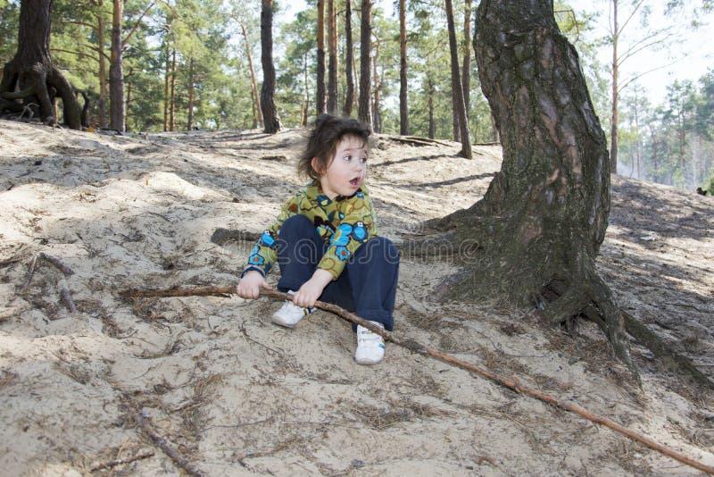 I sommaren i skog hänförde lilla flickan tyane av land l arkivbild
