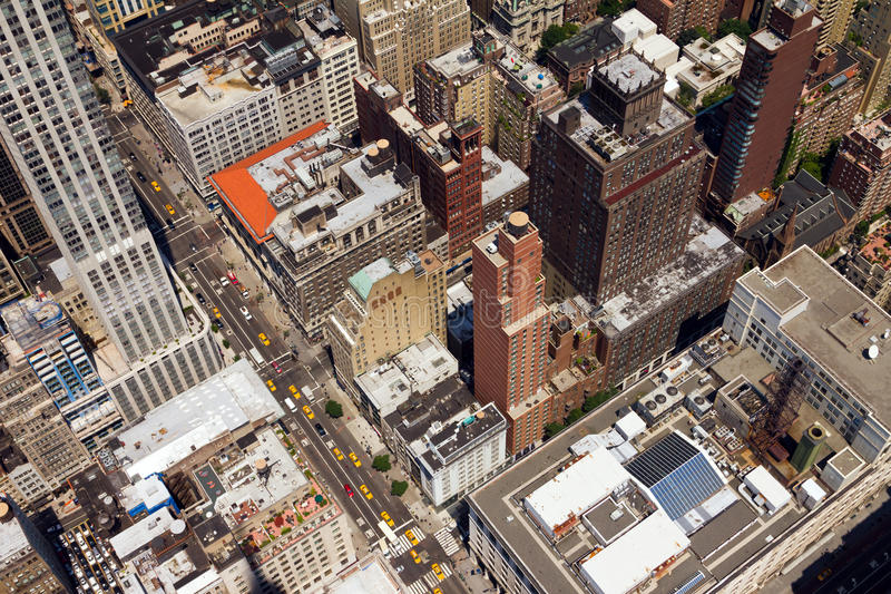 I stadens centrum stadsgatafåglar synar beskådar New York arkivfoto