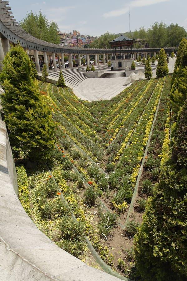 Download I Stadens Centrum Trädgårds- Mexico Toluca Fotografering för Bildbyråer - Bild av yellow, växter: 3548429