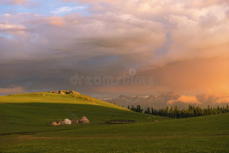 Quiet pastures in the morning stock photo